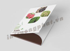 Trường Phát – Công ty thiết kế, in ấn giá rẻ
