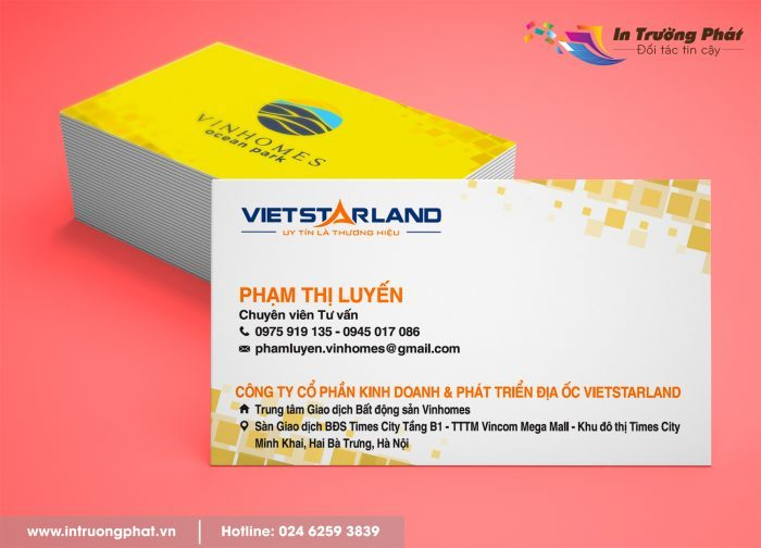 card-visit-phongt-thuy